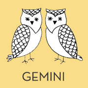 animal-orange-gemini